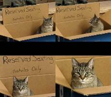 reserved serating